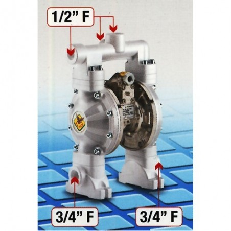 Pompa membranowa 1:1, 170 l/min Dual - RAASM